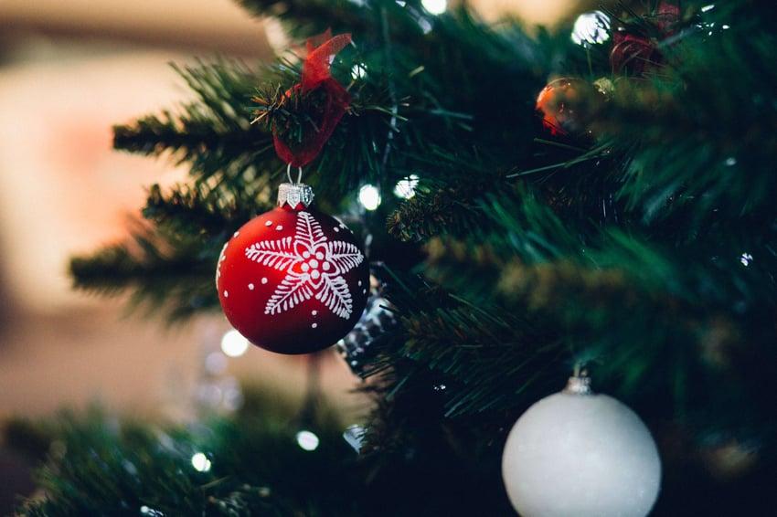 close-up-of-christmas-tree